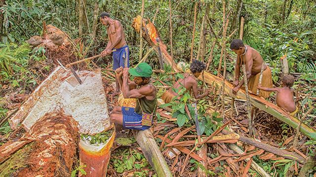 Papua Food Security