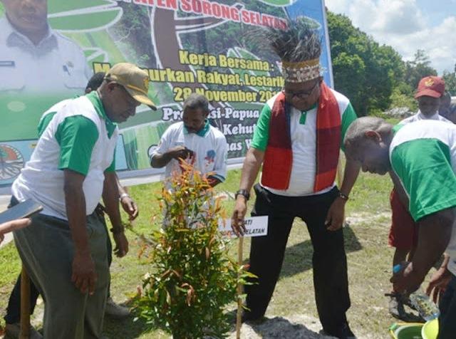 West Papua reforestation