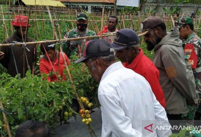 Motivation for Jayawijaya farmers