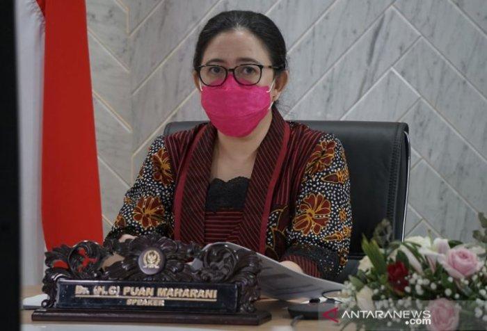Peace diplomacy in Papua